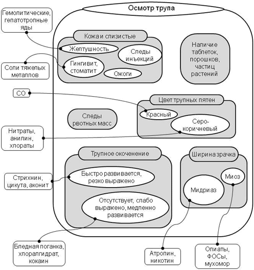 Логико-графическая схема